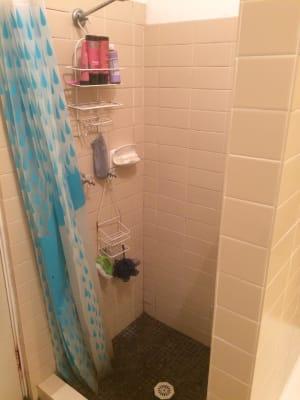 $224, Share-house, 3 bathrooms, Johnston Street, Annandale NSW 2038