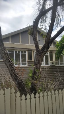 $140, Share-house, 4 bathrooms, Chester Road, Annerley QLD 4103