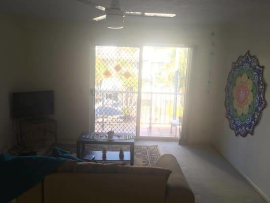 $240, Flatshare, 2 bathrooms, Palm Avenue, Surfers Paradise QLD 4217