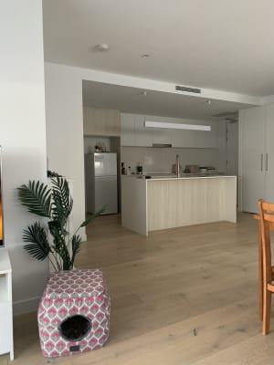 $220, Flatshare, 2 bathrooms, Canberra Terrace, Kings Beach QLD 4551