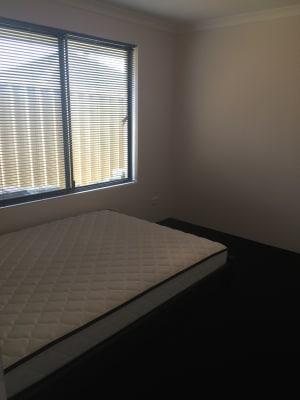 $120, Share-house, 4 bathrooms, Benenden Avenue, Butler WA 6036