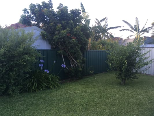 $185, Share-house, 3 bathrooms, Nevill Street, Mayfield NSW 2304