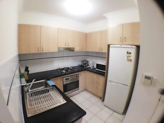 $450, Flatshare, 2 bathrooms, Buckland Street, Chippendale NSW 2008