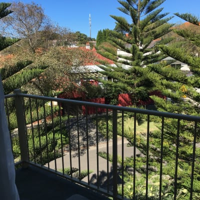 $350, Flatshare, 1 bathroom, Bradleys Head Road, Mosman NSW 2088