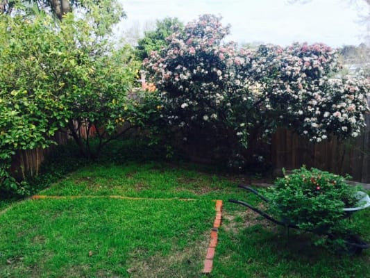 $200, Share-house, 3 bathrooms, Asquith Street, Kew VIC 3101