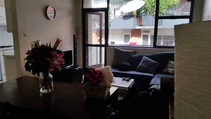 $300, Flatshare, 2 bathrooms, Ocean Street North, Bondi NSW 2026