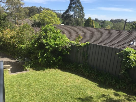 $250, Share-house, 5 bathrooms, Mona Vale Rd, Pymble NSW 2073