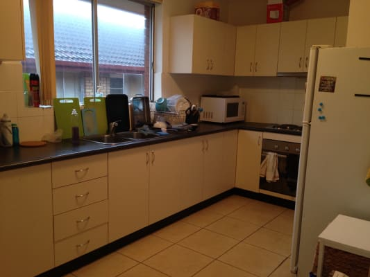 $230, Flatshare, 3 bathrooms, Blenheim Street, Randwick NSW 2031