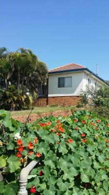 $130, Share-house, 5 bathrooms, Fairfield Road, Fairfield QLD 4103