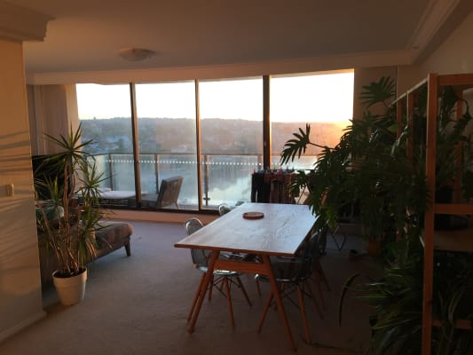 $350, Flatshare, 3 bathrooms, Whaling Road, North Sydney NSW 2060