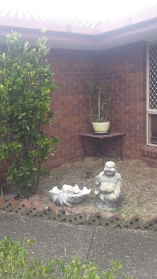 $175, Share-house, 4 bathrooms, Waldorf Place, Runcorn QLD 4113