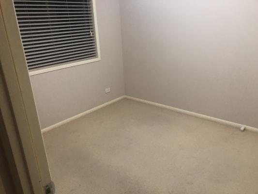 $175, Share-house, 4 bathrooms, Moonan Street, Maryland NSW 2287