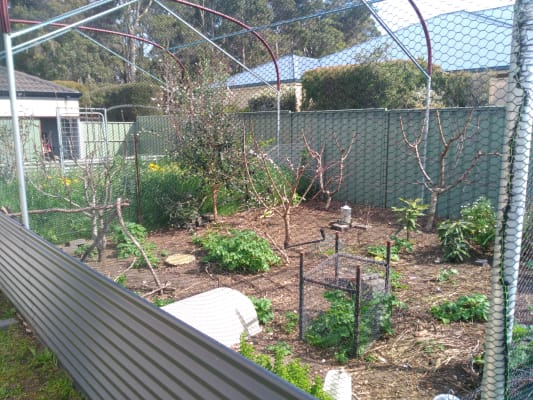 $160-170, Share-house, 2 rooms, Bottlebrush Drive, Margaret River WA 6285, Bottlebrush Drive, Margaret River WA 6285