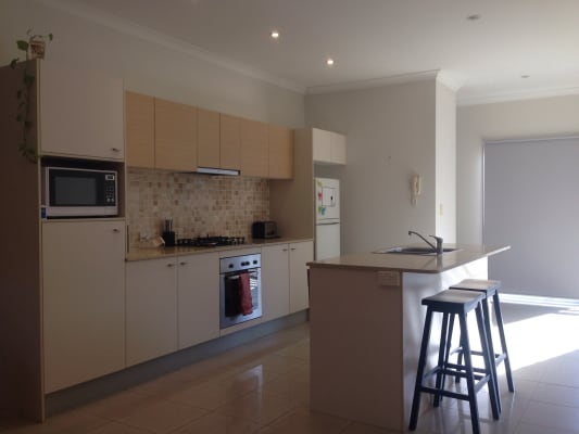 $250, Flatshare, 2 bathrooms, Princess Street, Dutton Park QLD 4102