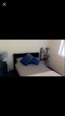 $280, Flatshare, 2 bathrooms, Lenthall Street, Kensington NSW 2033