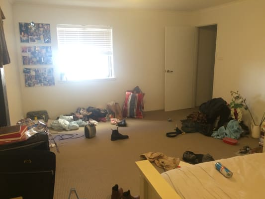 $370, Flatshare, 2 bathrooms, Buckland Street, Chippendale NSW 2008