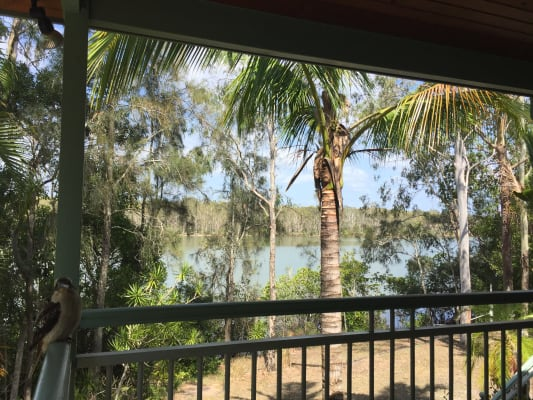 $300, Share-house, 5 bathrooms, Maximillian Road, Noosa North Shore QLD 4565