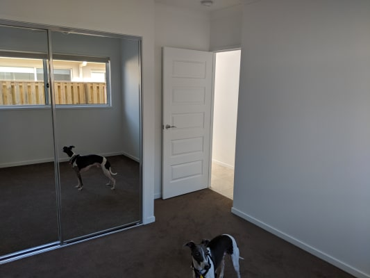 $220, Share-house, 4 bathrooms, Swan Road, Pimpama QLD 4209