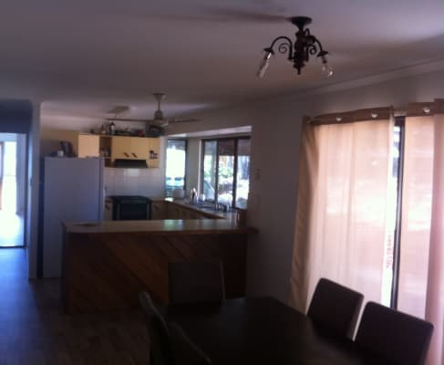 $150, Share-house, 4 bathrooms, Old Palmwoods Road, West Woombye QLD 4559