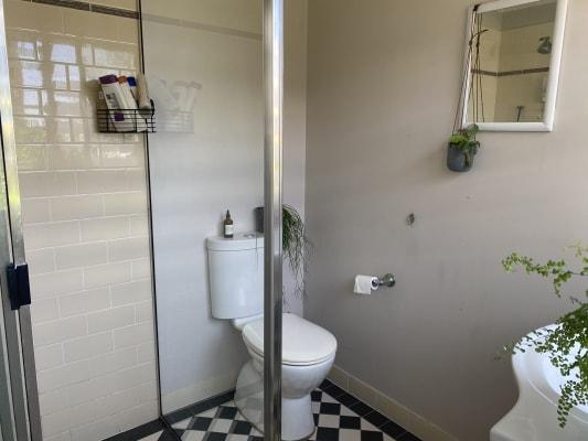 $300, Share-house, 3 bathrooms, Tyrrell Street, The Hill NSW 2300