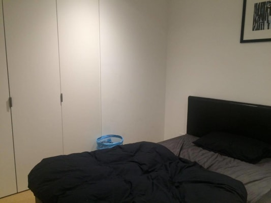 $310, Flatshare, 2 bathrooms, Swanston Street, Carlton VIC 3053