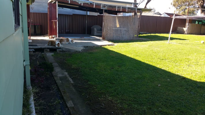 $350, Share-house, 4 bathrooms, Rex Road, Georges Hall NSW 2198