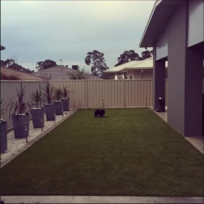 $260, Share-house, 4 bathrooms, Indi Close, Crace ACT 2911