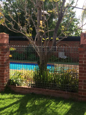 $200, Studio, 1 bathroom, Hall Avenue, Lavington NSW 2641