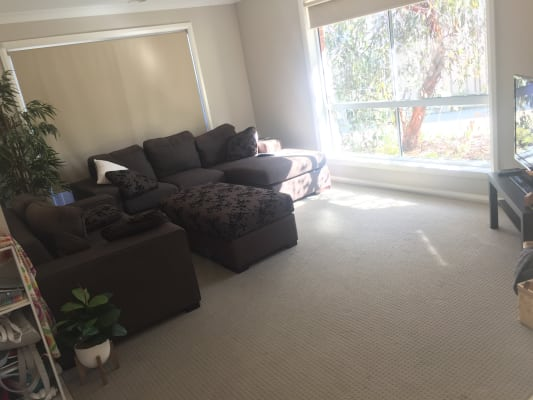 $170, Share-house, 3 bathrooms, Osterley Street, Bourkelands NSW 2650