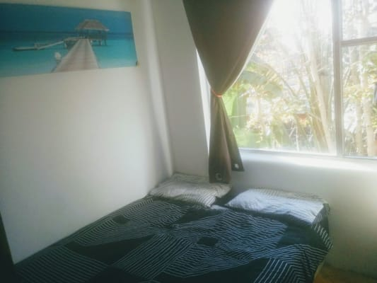 $200, Flatshare, 3 bathrooms, O'Brien Street, Bondi Beach NSW 2026