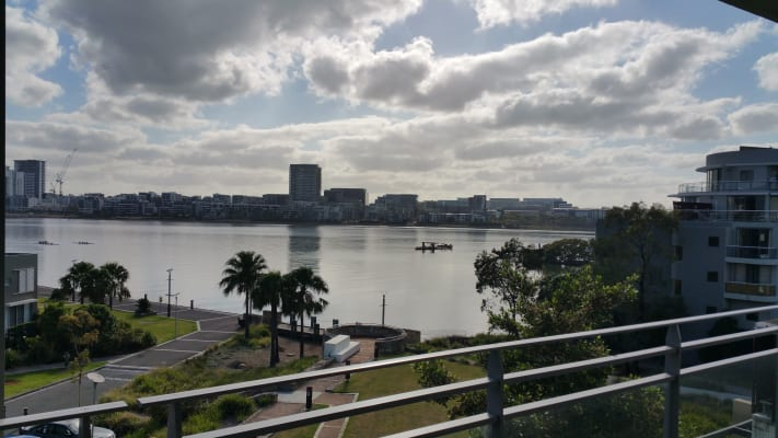 $295, Flatshare, 3 bathrooms, Amalfi Drive, Wentworth Point NSW 2127