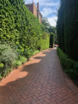 $900, Share-house, 3 bathrooms, Anderson Street, South Yarra VIC 3141