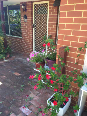 $200, Share-house, 3 bathrooms, Paget, Hilton WA 6163