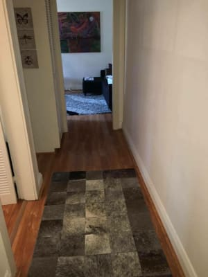 $295, Flatshare, 2 bathrooms, Blair Street, North Bondi NSW 2026