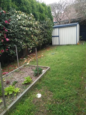 $165, Share-house, 3 bathrooms, Parkway Avenue, Hamilton South NSW 2303