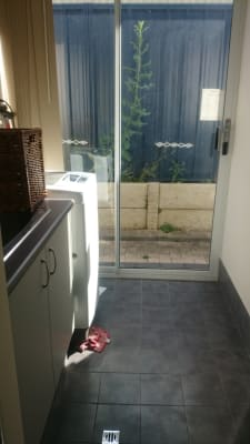 $175, Share-house, 4 bathrooms, Kent Street, Victoria Park WA 6100