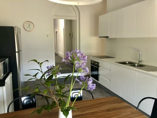 $210-241, Student-accommodation, 4 rooms, Greenhills Street, Croydon NSW 2132, Greenhills Street, Croydon NSW 2132