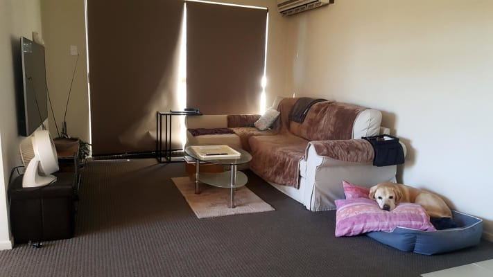 $160, Flatshare, 2 bathrooms, Old Cleveland Road, Greenslopes QLD 4120