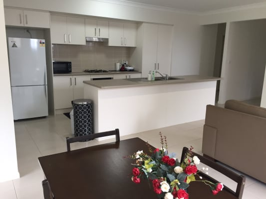 $240, Share-house, 4 bathrooms, McKenzie Boulevard, Gregory Hills NSW 2557