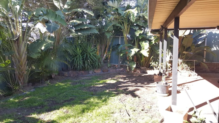 $280, Homestay, 4 bathrooms, Delaware Drive, Macquarie Hills NSW 2285