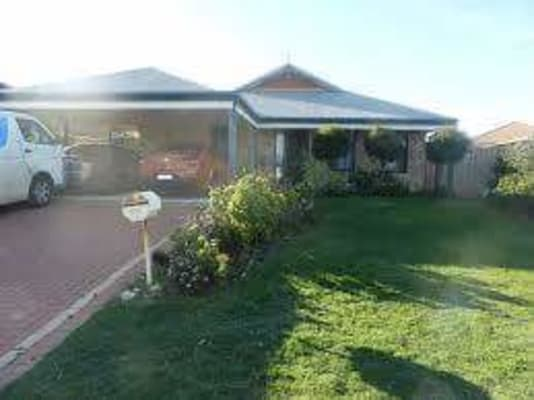 $100, Share-house, 3 bathrooms, Ingham Way, Butler WA 6036