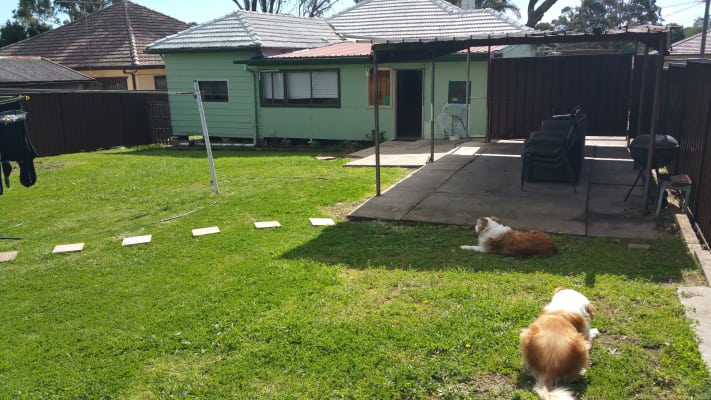 $250, Share-house, 4 bathrooms, Rex Road, Georges Hall NSW 2198
