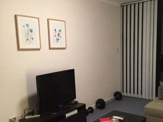 $325, Flatshare, 2 bathrooms, Albany Street, Saint Leonards NSW 2065