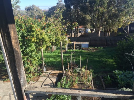 $145, Share-house, 3 bathrooms, Ash Grove, Oak Park VIC 3046