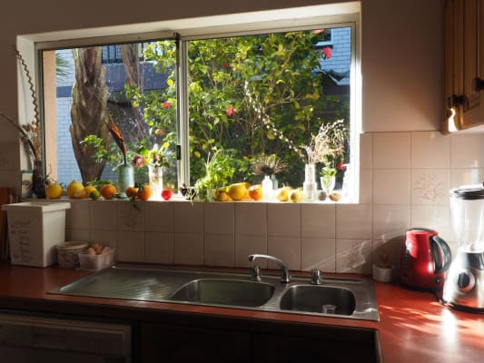 $320, Share-house, 5 bathrooms, Chaleyer Street, Rose Bay NSW 2029