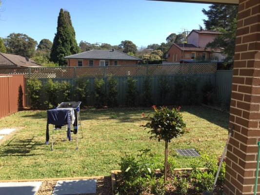 $230, Share-house, 5 bathrooms, Illarangi Street, Carlingford NSW 2118