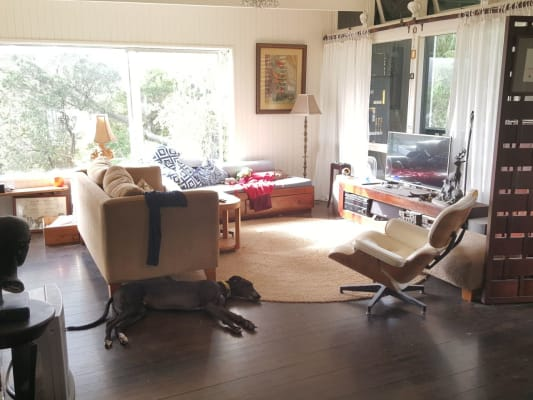 $300, Share-house, 4 bathrooms, Palm Road, Newport NSW 2106