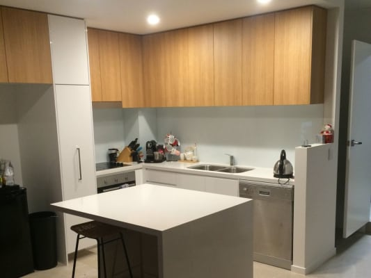 $160, Share-house, 3 bathrooms, Parnell Blvd, Robina QLD 4226