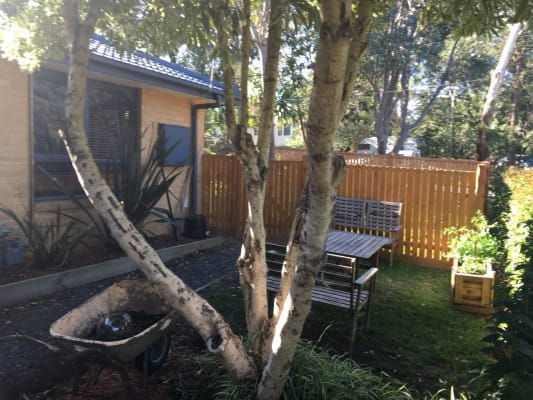 $160, Flatshare, 2 bathrooms, Through Rd , Ringwood North VIC 3134