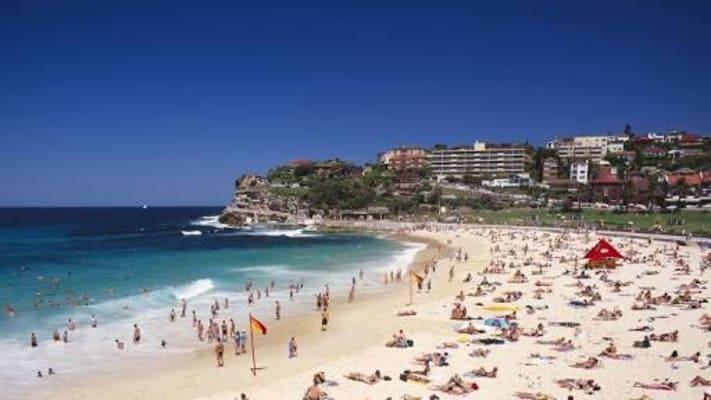 $600, Flatshare, 3 bathrooms, Brighton Boulevard, North Bondi NSW 2026
